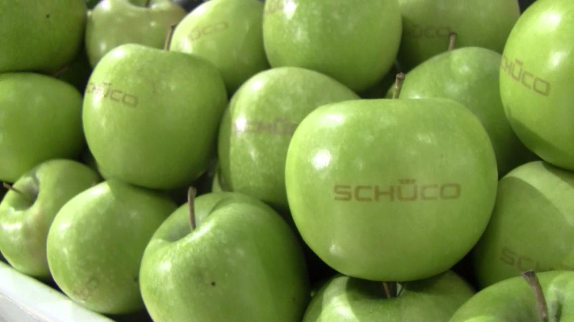 Schüco Äpfel auf der Ecobuild