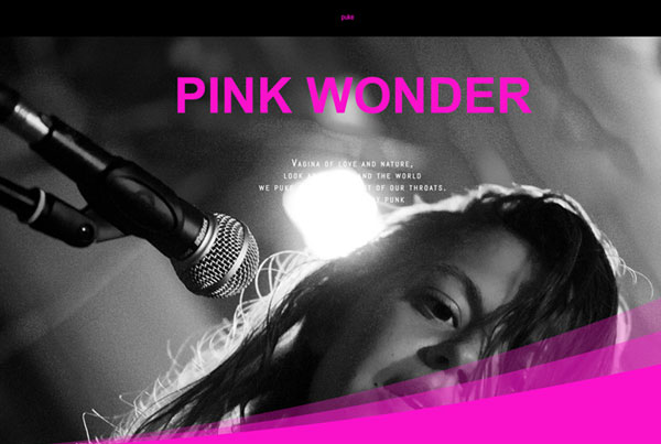 Referenzen gruppenrausch - Pink Wonder Band aus Berlin